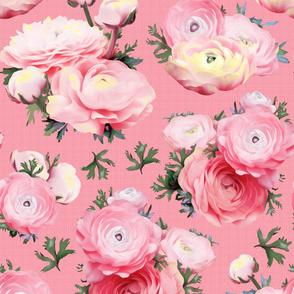 Oversized Floral Pink Ranunculus