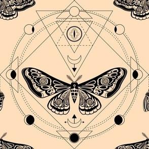 Night moth 4. Sacred geometry