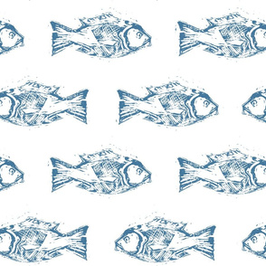 SNAPPER FISH BLUE ON WHITE