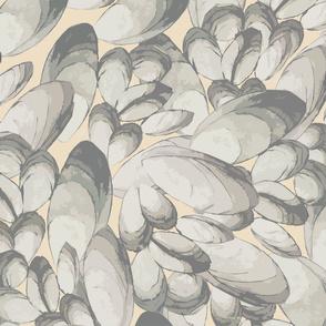 Peach Mussels