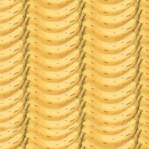 Monkey Business Banana Stripes