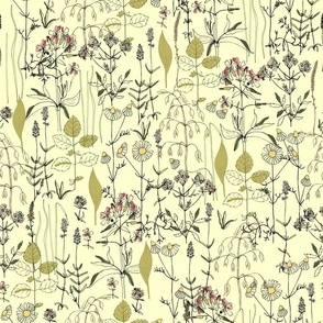 homeland flora