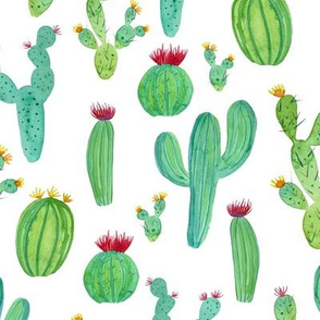 Watercolour Cactus