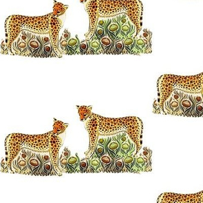 cheetahs__panthers_on_the_grass