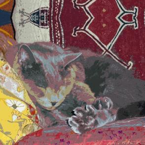 Sprocket Asleep on Gujarati Pillows
