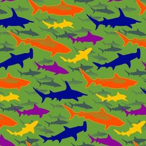 tiger beach sharks - green