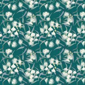 Flowering gum tree - green