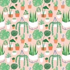 Friday Plants