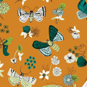 Moths and Florals in Orange