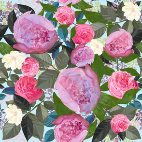 Pink Peony and White Cosmos Flower Artistic Floral Pattern