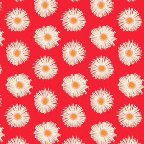 Pollinator Garden Collection-Daisies-Red