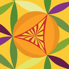 Citrus  lattice  on tangerine