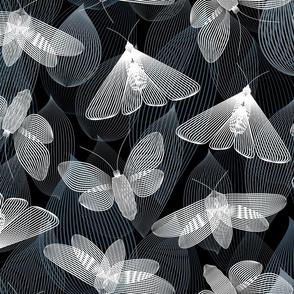 Flittery Linocut Moths