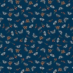 Moths-Blue