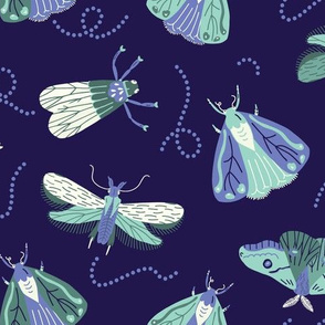 Moths in the night sky