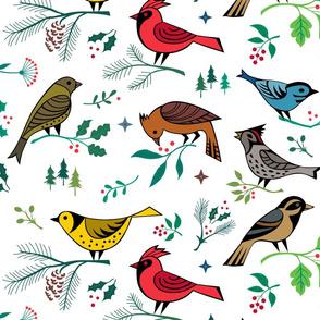 winter flora birds