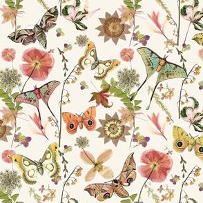 Moths n Wildflowers
