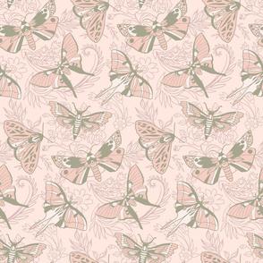 Blush Moths