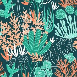 Coral reef ocean green
