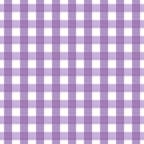 gingham 1in amethyst