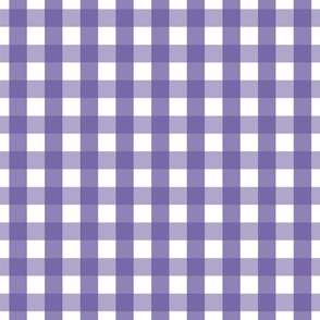 gingham 1in purple