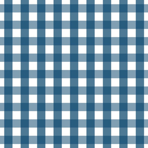 gingham 1in navy blue
