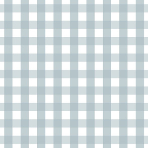 gingham 1in slate blue