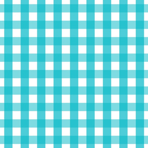 gingham 1in surfer blue