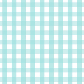gingham 1in light teal