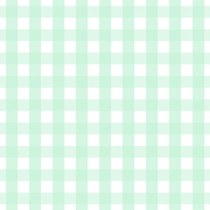 gingham 1in ice mint green