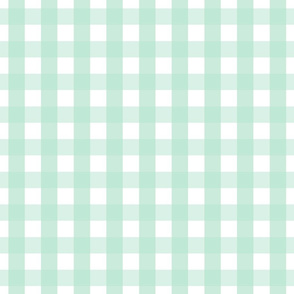 gingham 1in mint green