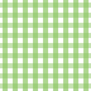 gingham 1in apple green