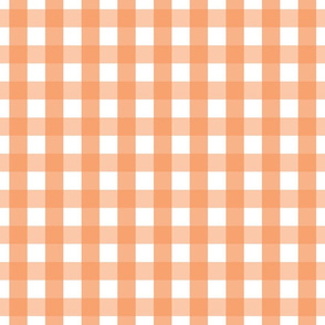 gingham 1in tangerine orange