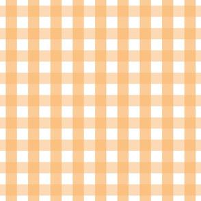 gingham 1in mango orange