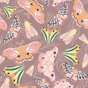 Jungle Moths pink