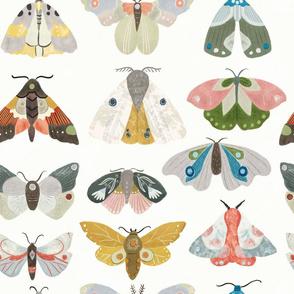 Moths on Parade
