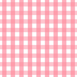 gingham 1in pretty pink