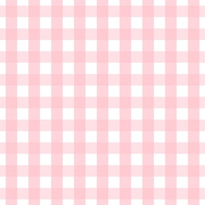 gingham 1in light pink