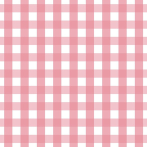 gingham 1in berry cream