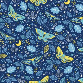 midnight moths
