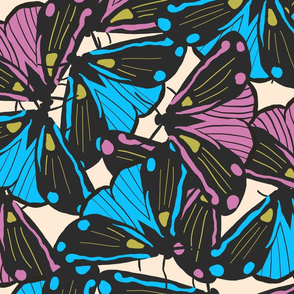 flutters of moths