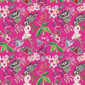 Moths in the Evening Garden-Pink