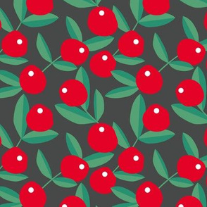 Christmas berries garden fruit and leaves botanical branch tropical spring design forest green red charcoal gray