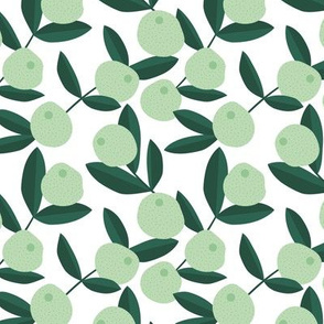 Citrus summer garden limes fruit and leaves botanical branch tropical spring design mint forest green lemon pie