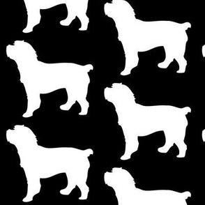Cockapoo Dog Silhouette, White on Black