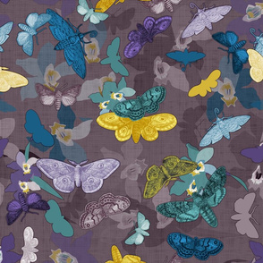 Moths & Orchids  (Quail)