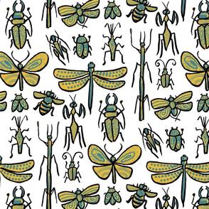 Golden Bugs onwhite