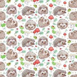 Hedgehog Heaven