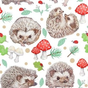 Hedgehog Heaven