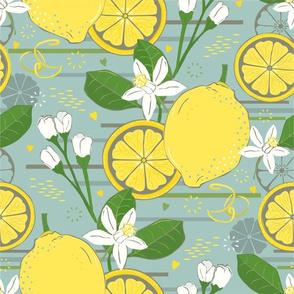 Lemon Grove - larger scale